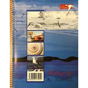 ALTRYAL 47737 COLLEGE PAD A5 RULED
