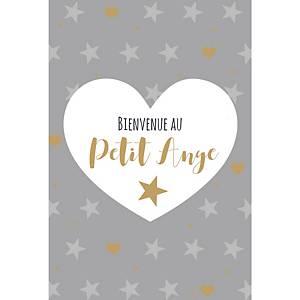 Cartes de vœux naissance bébé, français, le paquet de 6 cartes