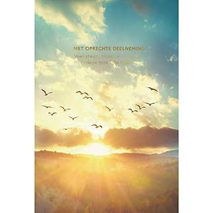 Greeting card condolences birds dutch - pack of 6