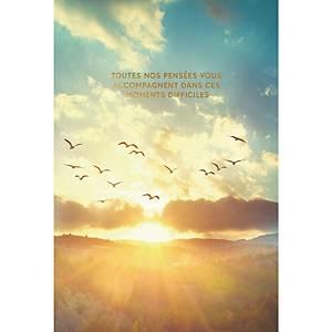 Carte de voeux condoléances, oiseaux, français, paquet de 6