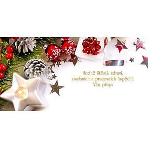 Novoroční přání Jehličí s bílou hvězdičkou, 20 x 10 cm