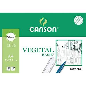 Mini pack de 12 hojas vegeral Canson Guarro - 95 g