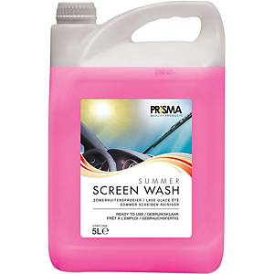 Windscreen washer fluid - 5 litres