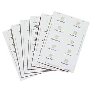 Innstikksetiketter til navneskilt Durable, 5,4 x 9 cm, pakke à 200 stk.