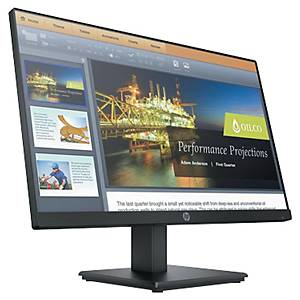 Ecran PC HP ProDisplay P224 - LED - HD - 22