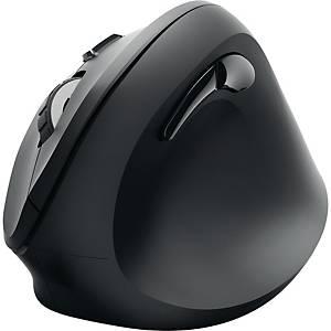 Maus Hama EMW-500, kabellos, schwarz