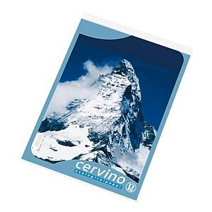 Blocco punto metallico Pigna Cervino A4 quadretti 5 mm 50 fogli