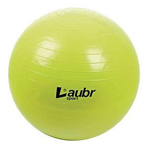 Piłka rehabilitacyjna do komputera, średnica 75 cm, pompka w zestawie