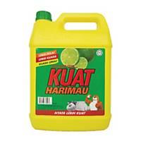 Kuat Harimau Dishwash Detergent 5l Lime