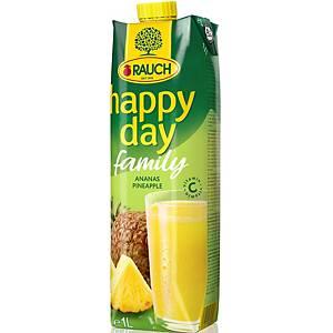 HAPPY DAY FAMILY ANANAS 1L