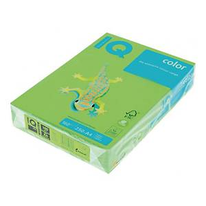 RM250 IQ COLOR PAPER A4 160G GREEN