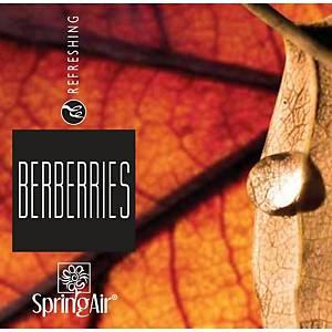 Náplň do osvěžovače vzduchu BERBERRIES 500ML