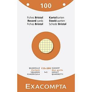 Exacompta systeemkaarten, geruit, geperforeerd, 125x200mm, 4 kleuren, 100 fiches