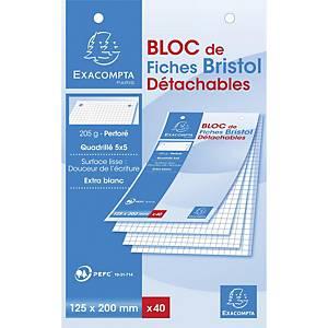 Exacompta systeemkaarten, geruit, geperforeerd, 125 x 200 mm, wit, 40 fiches