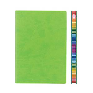 Daycraft 2021 Signature Chromatic Diary A5 Green Chinese Version