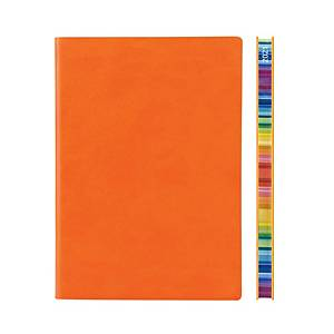Daycraft 2021 Signature Chromatic Diary A5 Orange Chinese Version