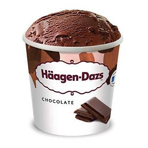 PK24 HAAGEN-DAZS PINT CHOCOLATE