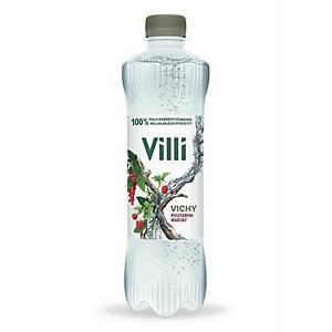 Villi Vichy puutarhamarjat 0,5L, 1 kpl=12 pulloa