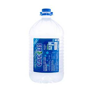 Cactus Mineral Water 5.5L - Box of 2