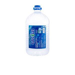 Cactus Mineral Water 9.5L - Box of 2