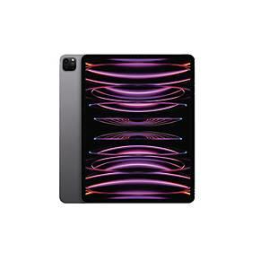 (직배송)애플 MXAX2KH/A 아이패드 6GB/1TB 12.9  스페이스그레이