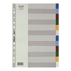 Bantex 辦得事 A4 塑膠顏色索引分類 12層