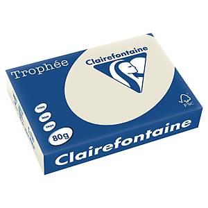 Trophée farebný papier Clairefontaine, A4 80g/m² - svetlosivý