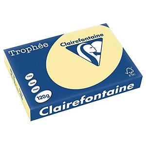 Papier pour photocopieur Trophee 1248 A4, 120 g/m2, canari jaune, paq. 250flles