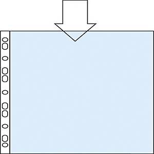 Pack de 100 micas multifuro Esselte - fólio - PVC liso - 80 μ