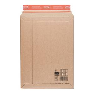 PK10 ENVELOPES CAR 303X413 BRW