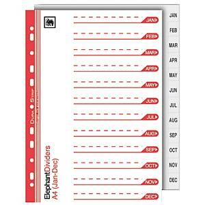ตราช้างอินเด็กซ์กระดาษ910 120 แกรม JAN-DECA4 สีขาว
