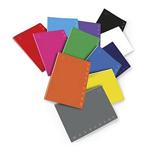 Quaderno Pigna Monocromo Maxi 21 x 29,7 cm quadretti 4 mm colori assortiti