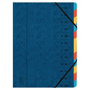 Brause Multicoloured Foolscap 12-Part Multipart File With Elastic