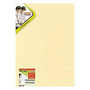 Carta pergamena Decadry A4 95 g/mq champagne - risma 25 fogli