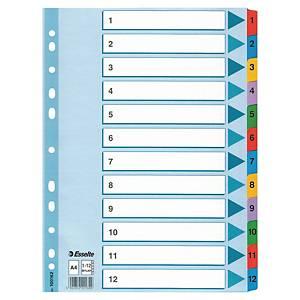 Esselte Multicoloured A4 Mylar 1-12 Indexes