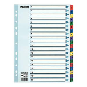 Przekładki kartonowe ESSELTE Mylar z laminowanymi kolorowymi indeksami A4  1-20