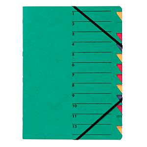 Ordnungsmappe Pagna 24131, 12 Fächer, mit Gummizug, grün