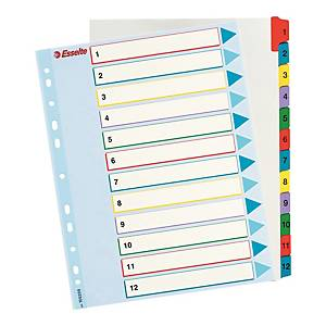 Przekładki kartonowe ESSELTE Mylar z laminowaną kartą opis. A4+ numeryczne 1-12