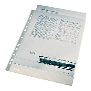 PK100 ESSELTE 56061 FOLDER  A4 CLR