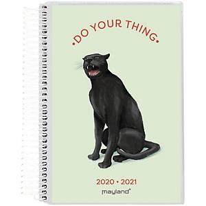 Studiekalender Mayland 8040 00, dag, 2020/21, 11,7 x 17,1 cm, 4 illustrationer
