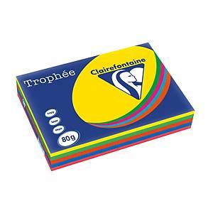 RM500 TROPHEE 1708 PAP A3 80G 5DEEP COL