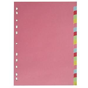 Lyreco Budget Cardboard Dividers 20-Part A4 Pastel