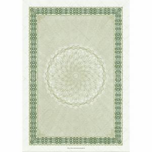 Zertifikat ohne Text neutral A4, grün, Pack à 10 Blatt