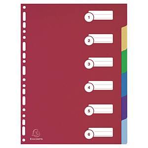 Exacompta Register für DIN A4 6-teilig