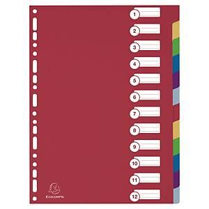 Intercalari neutri Exacompta A4 PPL 12 tasti colorati