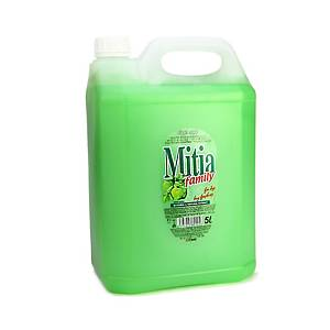 MITIA SOAP FAMILY APPLE 5L