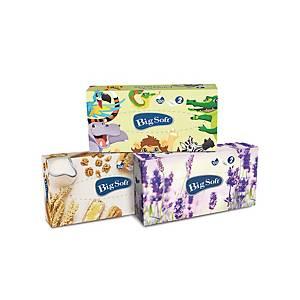 Big Soft Deluxe 2-lagige Papiertaschentücher in Box, 100 Stück