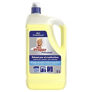 Detergente multiuso Mastro Lindo limone 5 L