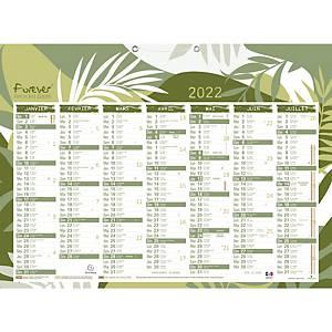 Exacompta Forever kalender 2x7 maanden 40,5x55cm tweetalig NL en FR
