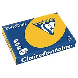 Papier pour photocopieur Trophée 1257 A4, 120g/m2, jaune tournesol, 250feuil.